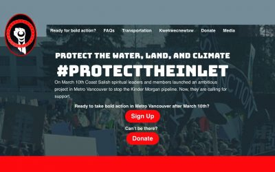 protect-the-inlet-website-screenshot